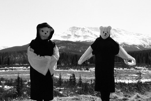 2 teddy bear scarecrows against a mountain background