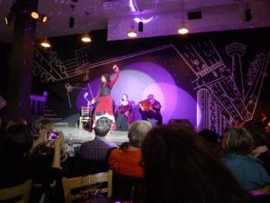 A female Flamenco dancer onstage, one arm raised.
